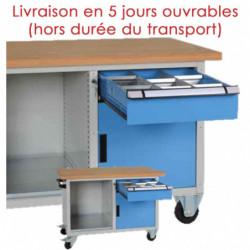 Etabli compact mobile 1 tiroir, 1 porte et 1 niche