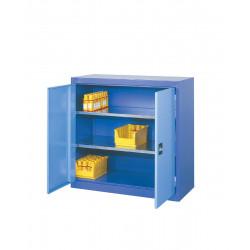 Armoire à portes battantes L 1000 x P 500 x H 1000 mm